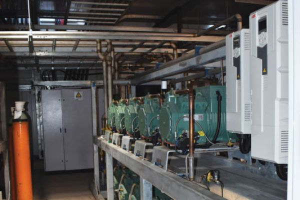 The compressor sets in the refrigeration plant room.